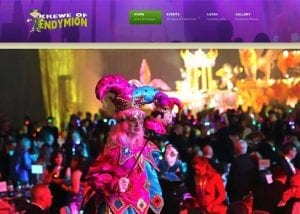 endymion website design image