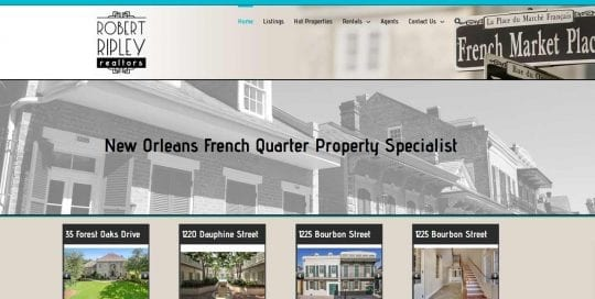 robert ripley realtors website design image