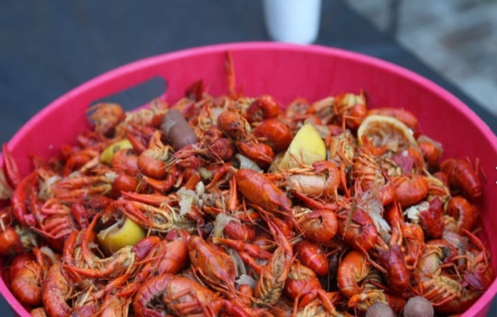 In summary, dead crawfish, even after five days in a cooler, exhibited about the same degree of curl as live crawfish when cooked.