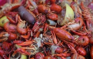 To Eat or Not To Eat a Straight Tail Crawfish?