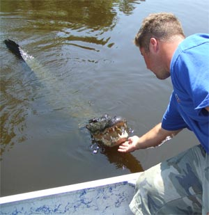 you will see at least one gator
