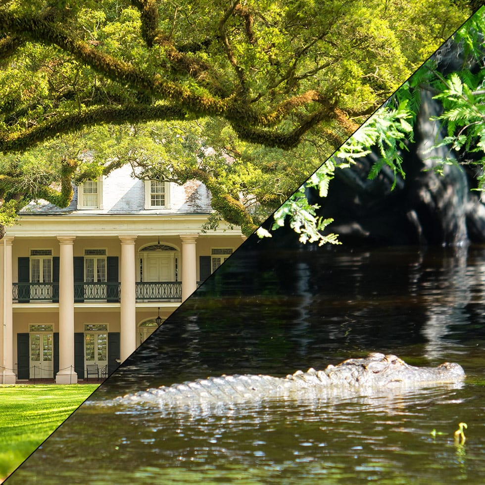 Oak Alley Plantation and Swamp Tour Boat, Combination Tours
